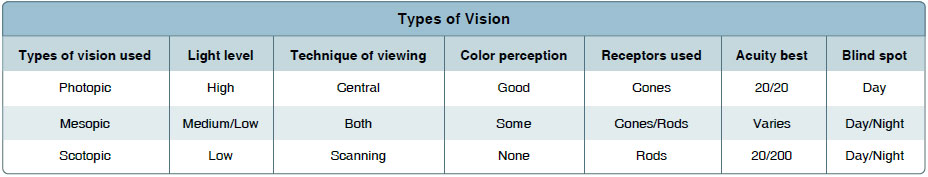 Figure 17-13. Types of vision.