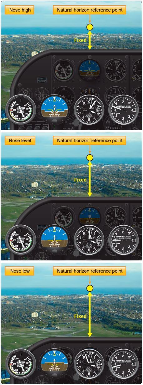 Figure 3-8. Nose reference for level flight.
