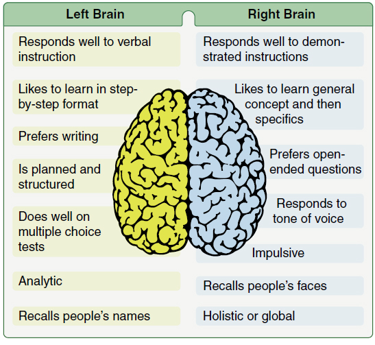 Figure 2-14. The importance of recognizing a dominant brain hemisphere gives the instructor a guide for ways to teach and reinforce learning.