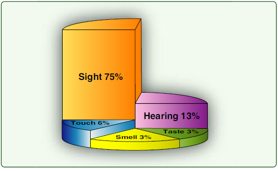 Figure 2-5. Most learning occurs through sight, but the combination of sight and hearing accounts for about 88 percent of all perception.