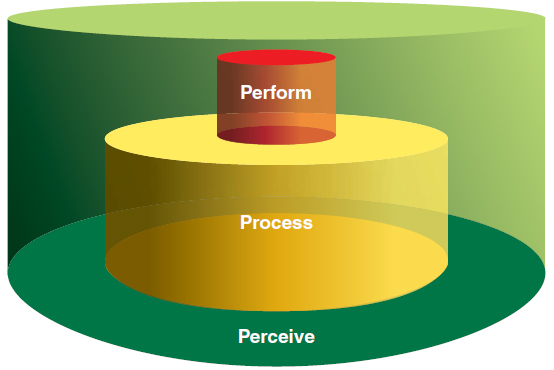 Figure 5-3. The 3P model: Perceive, Process, and Perform.