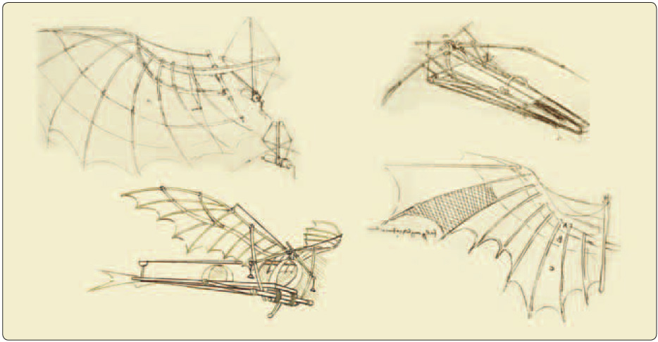 Figure 1-1. A human-powered ornithopter is virtually incapable of flight due to its poor strength-to-weight ratio.