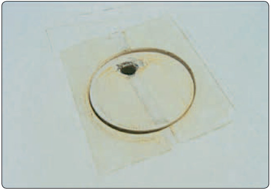 Figure 5-21. Water ballast tank vented filler cap.