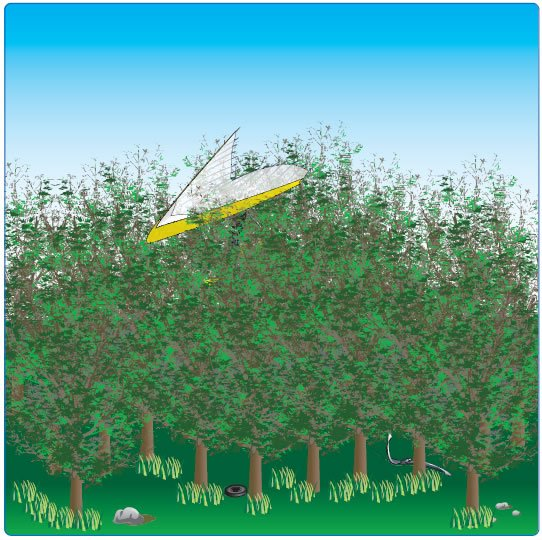 "Figure 13-5. Using treetops to ""hang"" the wing during an emergency landing."
